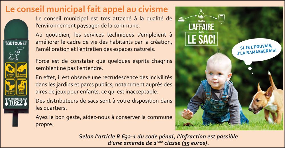 le-conseil-minicipal-fait-appel-au-civisme_la-chapelle-saint-aubin